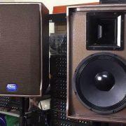 Loa Karaoke DMX CH12